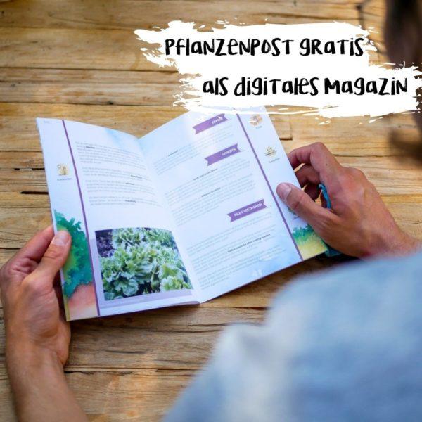 Produktfoto eines Pflanzenkalenders